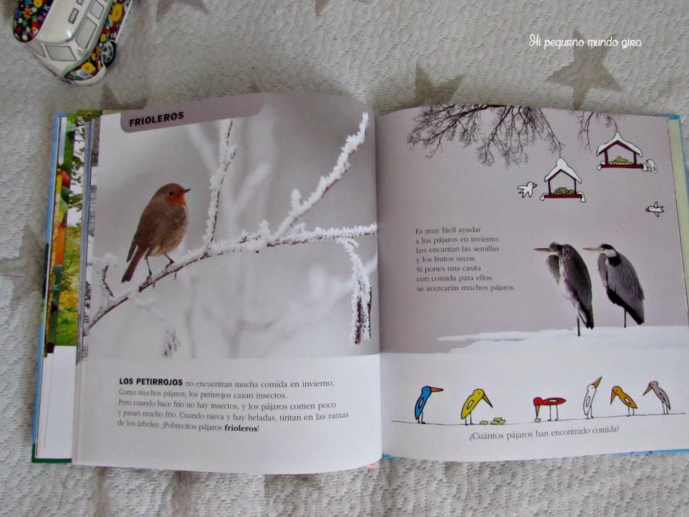 IMG_libro estaciones