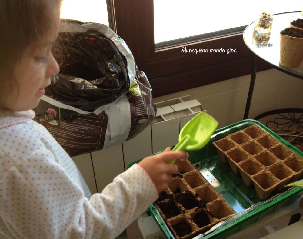 plantar semillas