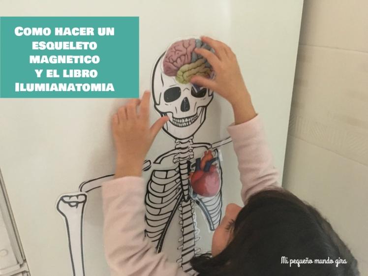 un esqueleto magnetico y el libro Ilumianatomia